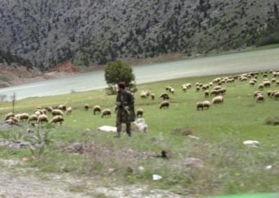 Tag8_Kayseri_Adana (37)