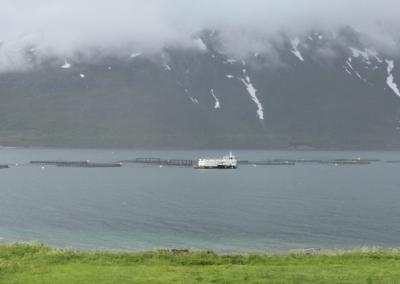 21-Norwegen-nach-Lofoten-640x427